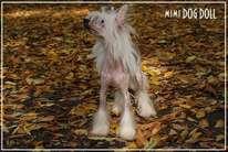 Olegro Katrin Smail For Mimi Dog Doll