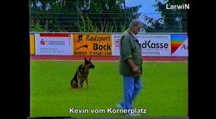 Kevin vom Körnerplatz