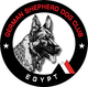 GSDCE Egypt Sieger Show