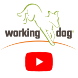 working-dog youtube logo